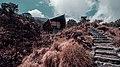Mountain Cabin.jpg
