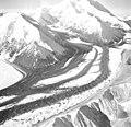 Muldrow Glacier, valley glaciers converging creating medial moraines, September 3, 1970 (GLACIERS 5002).jpg