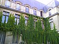 Musée Carnavalet Jardins et Batiments 03.jpg