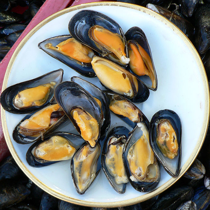 Mussels at Trouville fish market