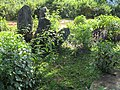 Mysterious Standing Stones of Hintang - panoramio (1).jpg