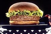 Esempio di un hamburger variamente condito