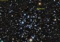 NGC 2323 PanS.jpg