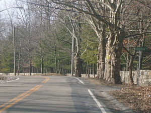 New York State Route 448 - Image: NY 448 at Stillman Lane