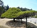 Nanko Park - panoramio - Fumihiko Ueno.jpg