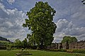 Naturdenkmal Zwei Alte Linden, Kennung 82350800009, Schloßruine, Wildberg 05.jpg