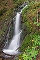 Naturschutzgebiet Schwarza-Schlücht-Tal - Wasserfälle in der Berauer Halde Bild 4.jpg