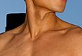 Neck male yellow.jpg