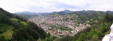 Неделино, панорама 2004.jpg