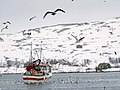 Nervei - boat 0101.jpg
