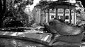 New Orleans Audubon Zoo.jpg