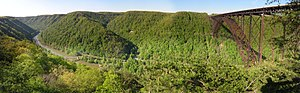 New River (Kanawha River) - The New River Gorge and Bridge near Fayetteville, West Virginia