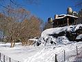 New York. Central Park. Snowy (2797030157).jpg