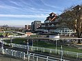 Newbury Racecourse Heartspace.jpg