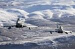 No 1435 Flight Typhoon FGR4 MOD 45164208.jpg
