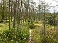 Norra Kvills nationalpark 2012e.jpg
