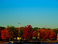 Northside Town Center in Fall - panoramio.jpg