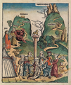 Nuremberg chronicles f 31r 1.png