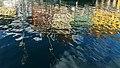 Nyhavn Reflections 2017-08-16.jpg