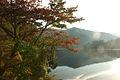 Okutama lake(Ogouchi dam) (3048618396).jpg