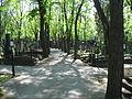 Olšanské hřbitovy 0302.JPG