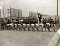 Olympic Games- Start of the 400 Meter Race at the 1904 Olympics.jpg