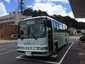 Onan Town Bus.jpg