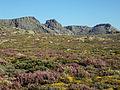 Os Cântaros na Serra da Estrela..jpg
