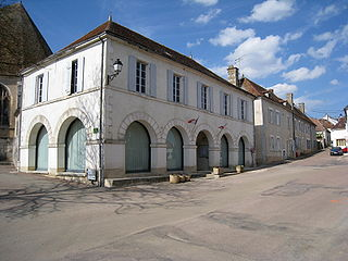 Ouanne Commune in Bourgogne-Franche-Comté, France