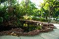 Outra fonte, habitada por peixes e várias plantas.jpg