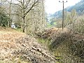 Overgrown middle section of the Hafod Las Quarry incline - geograph.org.uk - 402504.jpg