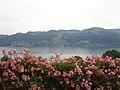 Overlooking Lake Thun from Einigen - panoramio.jpg
