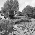 Overzicht van op de vesting aangelegde tuin - Weesp - 20252548 - RCE.jpg