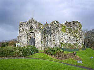 Oystermouth Castle - geograph.org.uk - 1617797.jpg