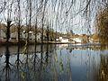 Périgueux bassin gelé (1).jpg