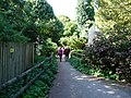 Paignton , Paignton Zoo Footpath - geograph.org.uk - 1484657.jpg