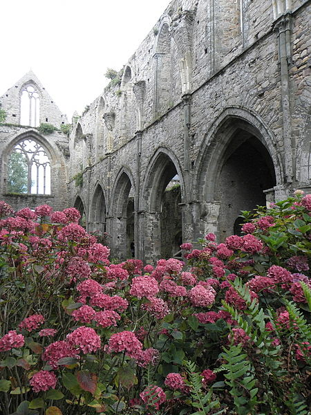 Costale nord de la nef de l'abbatiale de Beauport en Paimpol (22).