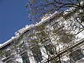 Palacio de Bellas Artes entre Jacarandas, Centro Histórico de la Ciudad de México.jpg