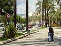 Palma Mallorca 2008 50.JPG