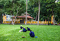 Parque Tao Dan, Ciudad Ho Chi Minh, Vietnam, 2013-08-15, DD 02.JPG