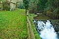 Parque da Cabreia - Portugal (4269161962).jpg