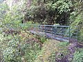 Passerelle sentier barrage Bras Patience - panoramio.jpg