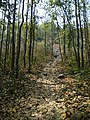 Path leading to stone inscription - Susunia hill 2.jpg