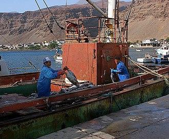 São Nicolau, Cape Verde - Tarrafal de São Nicolau fishing boat