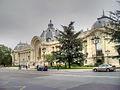 Petit Palais - Dr. Murali Mohan Gurram 3.jpg