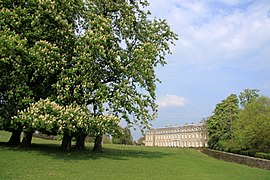 Petworth House and Park.jpg