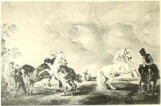 Horses Rearing in an Open Landscape