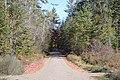 Piercefield, NY, USA - panoramio (39).jpg