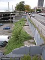 Pike Place Market - former foundations west of Western Avenue.jpg