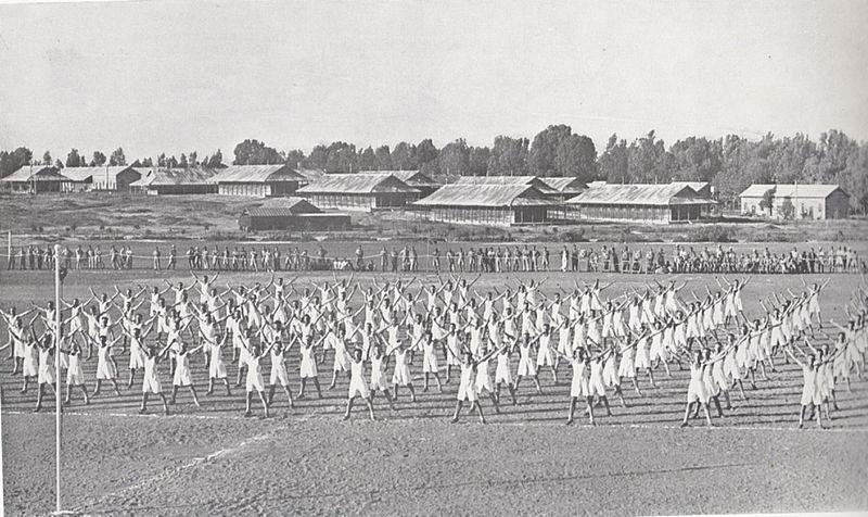 אימונים במחנה צריפין - סרפנד